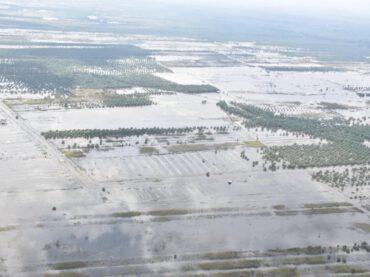 จังหวัดนครศรีธรรมราช สรุปยังมีน้ำท่วมขังรวม 10 อำเภอ 40 ตำบล 218 หมู่บ้าน 22 ชุมชน เสียชีวิต 21 ราย